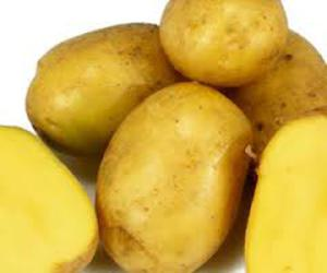 Potato - Yellow (LOCAL)
